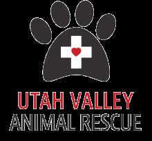 UVAR Logo v1
