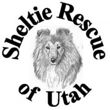 sheltierescue